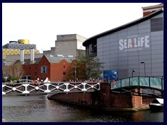 Worcester and Birmingham Canal 14 - Sealife.JPG