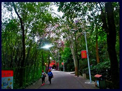 One of the hilly walking paths of Yuexiu Park.