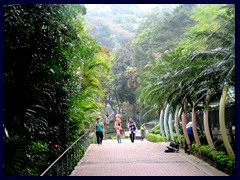 Hong Kong Park, a hilly, beautiful park in between Central/Admiralty and Mid-Levels. It opened in 1991 and covers and area of 80 000 m2.
