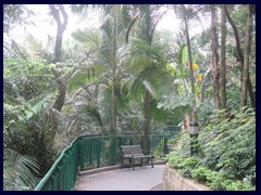 Hong Kong Zoological and Botanical Gardens, one of the oldest of its kind in the world, is open to public and has no entrance fee. We just walked in from Conduit Road. It is more like a very beautiful park with animals then a typical zoo.