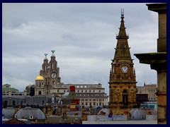 Views from the Central Library 08 - Royal Liver Bldg, Municipal Bldgs