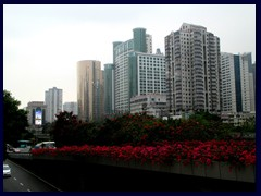 Flowers and skyscrapers of Luohu district.