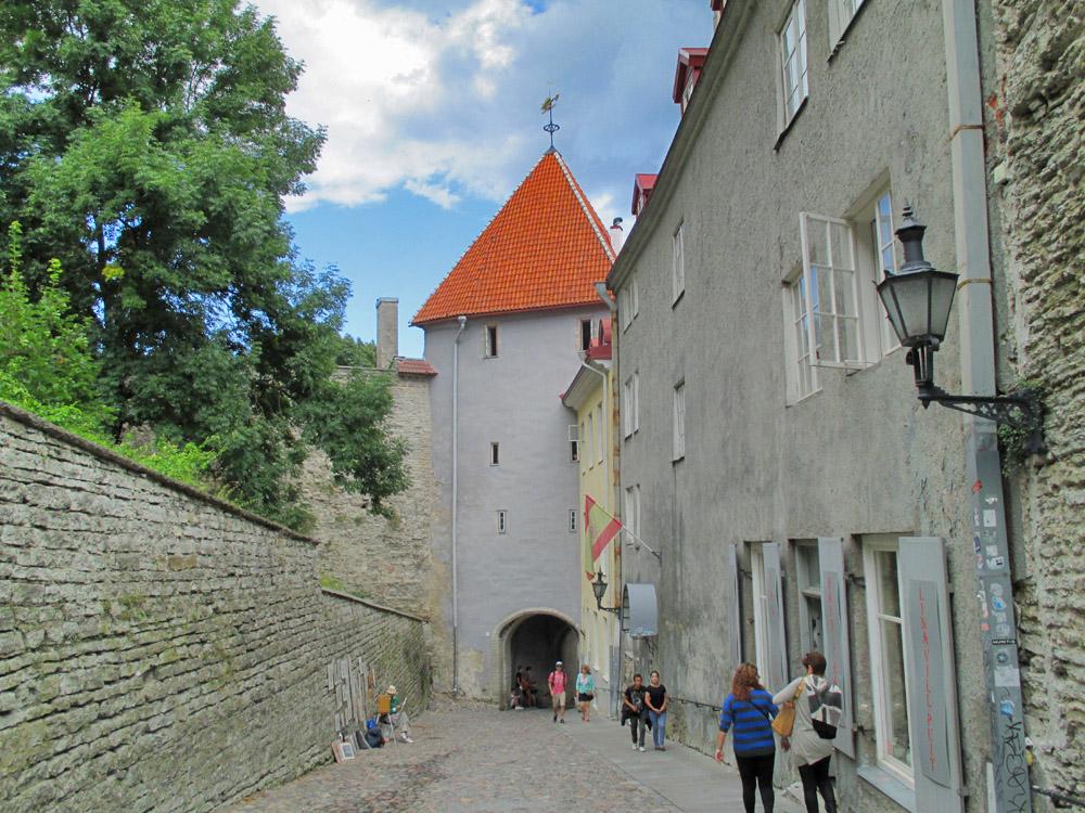 Tallinn Old Town Toompea Hill Nevsik Cathedral Kiek